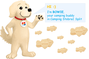 Loyalty Program - Meet our Bowie